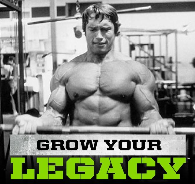 Iron Test е мощен стимулатор на растежния хормон и на тестостерона от Arnold Series