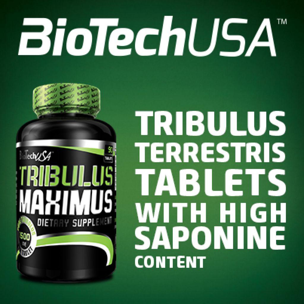 Tribulus Maximus е мощна формула с високо съдържание на сапонини