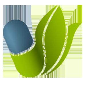 HEALTHSTORE Logo